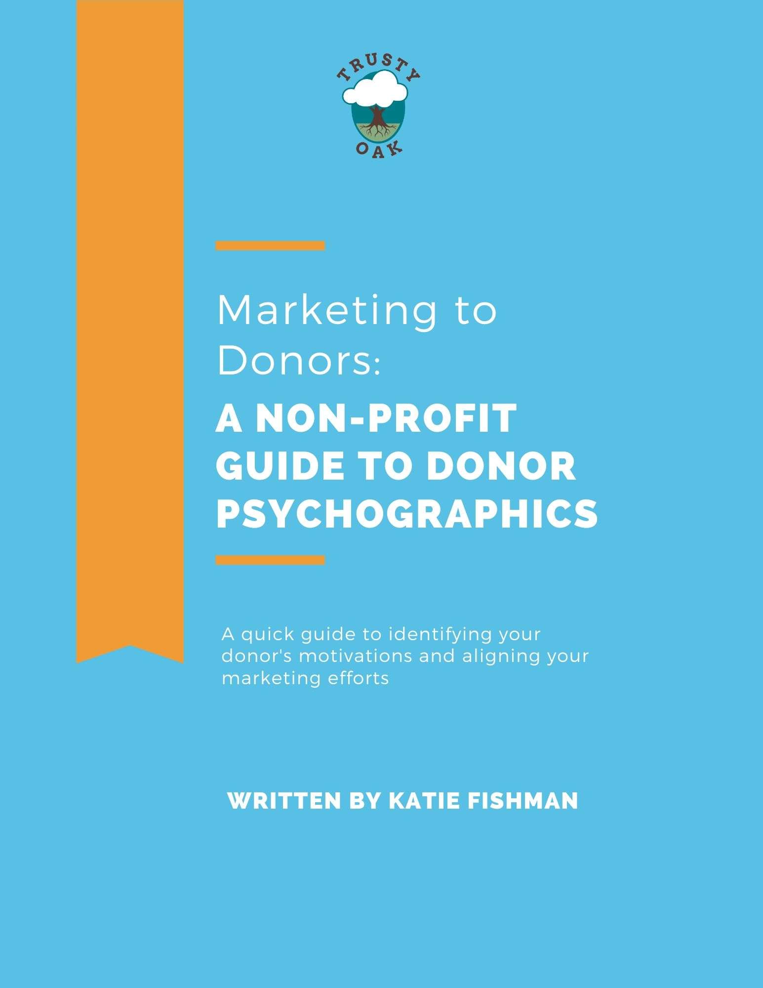 Marketing to Donors