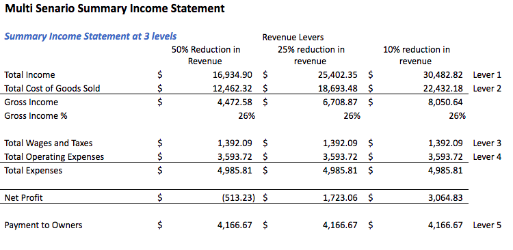 Example Multi Scenario Summary Income Statement